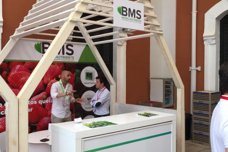 participación de BMS MN al congreso de frutos rojos