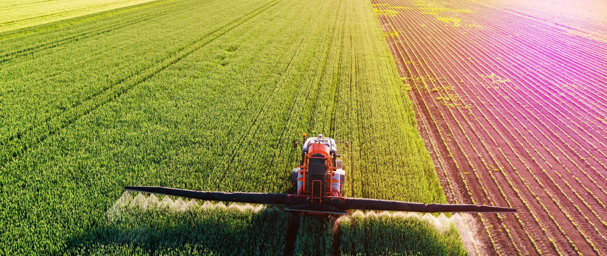 banner crops