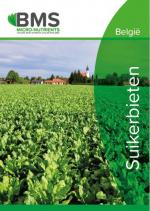 Chelal B - Suikerbieten
