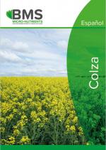 Chelal BMo - Colza